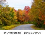 Striking colors of fall foliage on the road near Wellesley Island State Park, New York,U.S.A