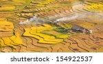 terraced rice fields   gold... | Shutterstock . vector #154922537