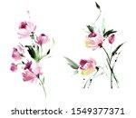 flowers watercolor illustration.... | Shutterstock . vector #1549377371
