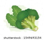 broccoli vector illustration on ...   Shutterstock .eps vector #1549693154