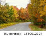 Stunning colors of fall foliage on the road near Wellesley Island State Park, New York, U.S.A