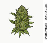 Handdrawn Vintage Cannabis Bud...