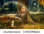 Enchanted Fairy Forest With...