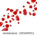 petal background. flying rose... | Shutterstock .eps vector #1551049511
