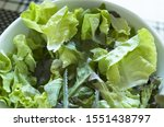 Green Salad In A White Cup