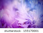 Floral soft tender  background...
