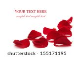 rose petals  isolated on the...   Shutterstock . vector #155171195
