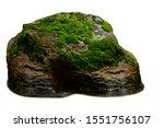 Green Moss Meadow On Rock In...