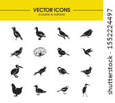 fowl icons set with myna ...