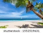 Sunny Beach With Coconut Palm...