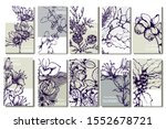 herbal illustration on label...   Shutterstock .eps vector #1552678721