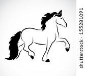 vector image of an horse  | Shutterstock .eps vector #155281091