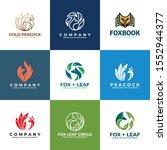 bird  fox  peacock logo design...   Shutterstock .eps vector #1552944377