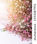 beautiful bouquets of dried... | Shutterstock . vector #1553387951