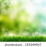 natural green background with... | Shutterstock . vector #155349047