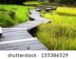 Boardwalks In Rice.