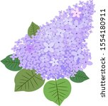 A Branch Of Lilac. Find Five...