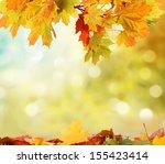 autumn background    Shutterstock . vector #155423414