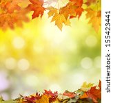 autumn background  | Shutterstock . vector #155423441