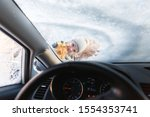 Small photo of The kid helps and scraping snow and ice from car window. Girl is cleaning car from ice. View from inside of car.