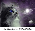 Stock photo cat in space 155463074
