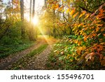Autumn Landscape With Pathway...