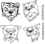 aggressive cat heads. set of... | Shutterstock .eps vector #155529131