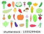 tasty colorful set of vegetable ... | Shutterstock .eps vector #1555299404