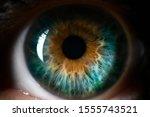 Blue Orange Human Eye Close Up...
