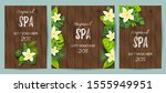 tropical backdrop with exotic... | Shutterstock .eps vector #1555949951
