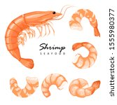 Shrimp prawn icons set. Boiled Shrimp drawing on a white background. Collection shrimp, shrimps without shell, shrimp meat. Realistic vector illustration