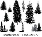 illustration with fir... | Shutterstock .eps vector #1556229377