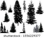 illustration with fir... | Shutterstock .eps vector #1556229377