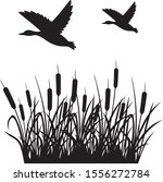 Flying Mallard Duck And Reeds...