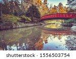Japanese garden with red arched bridge in Sarah P. Duke Gardens,Duke University,North Carolina,USA.