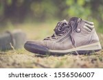 Dusty Old Shoe Abandoned In Th...