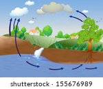 illustration showing water cycle | Shutterstock . vector #155676989