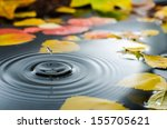 Rain Splashing Into A Pond In...