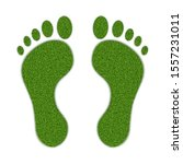 imprints of the legs of an... | Shutterstock .eps vector #1557231011