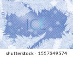 Frost Christmas Decoration Wit...