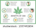 seven benefits of cbd or... | Shutterstock .eps vector #1557492854