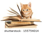 Stock photo cute little red kitten and books isolated on white 155754014