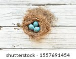 Real Birds Nest Over A Rustic...