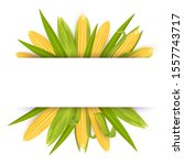 corn frame template  vector... | Shutterstock .eps vector #1557743717