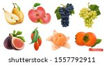 autumn fruits and berries. pear ... | Shutterstock .eps vector #1557792911