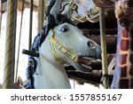 Fairhorse Of An Attraction In A ...