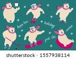 Polar Bear Is Skiing ...