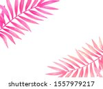 tropical palm leaves collection....   Shutterstock . vector #1557979217