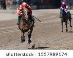 Lead Race Horse And Jockey...