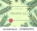 bright tropical background with ... | Shutterstock .eps vector #1558002941